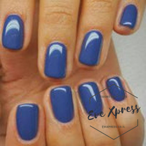 37 BLUE LAGOON